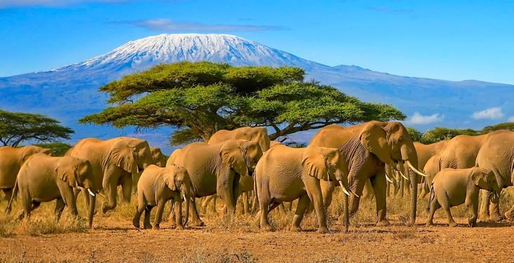Country spotlight: Tanzania