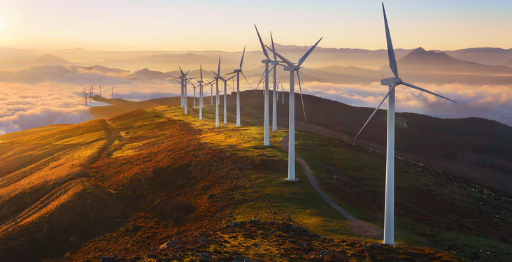 NEW for 2020 -<br>We're CARBON OFFSETTING our tours