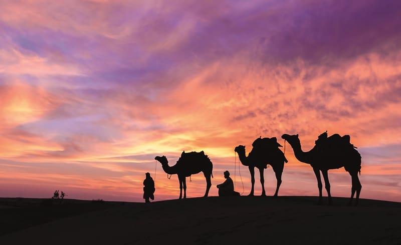 Petra Holidays & Tours