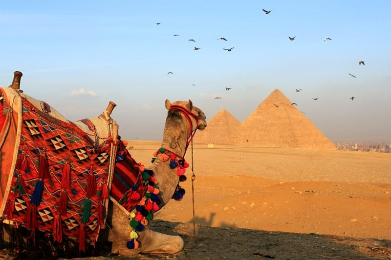 Family Holidays in Egypt